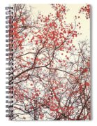 canopy trees II Spiral Notebook