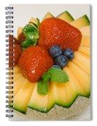 Cantaloupe Breakfast Spiral Notebook