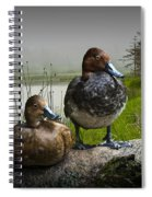 Canvasback Duck Pair By A Pond Spiral Notebook
