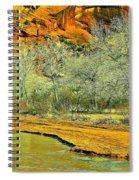 Canyon De Chelly - Spring I Spiral Notebook
