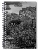 Canyon Del Oro No.48 Spiral Notebook