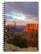 Canyon Rim Tree Spiral Notebook