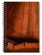 Canyon Ruins Spiral Notebook