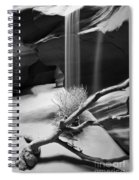 Canyon Sandfall Spiral Notebook