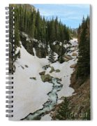 Canyon Scenery Spiral Notebook