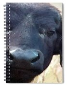 Cape Buffalo Up Close And Personal Spiral Notebook