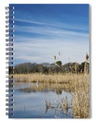 Cape May Marshes Spiral Notebook