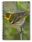 Cape May Warbler Spiral Notebook