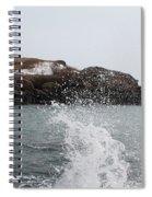 Cape Neddick - Nubble Light 4 Spiral Notebook