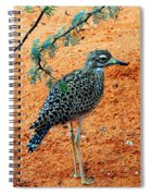 Cape Thick-knee Spiral Notebook