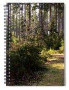 Capitol Forest Logging Road Spiral Notebook