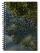 Capricious Green Sunspots Shadows And Reflections Spiral Notebook