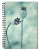 Capsules Series Spiral Notebook