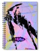Capture Ratio Spiral Notebook