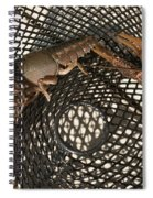 Captured Crawdaddies Spiral Notebook