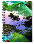 Car Seven Spiral Notebook