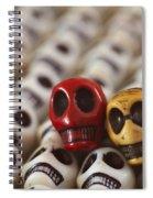 Cardinal And Gold Spiral Notebook