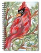 Cardinal At Rest Spiral Notebook