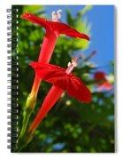 Cardinal Climber Flowers Spiral Notebook