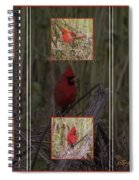 Cardinal Family Spiral Notebook