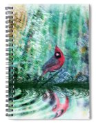 Cardinal - Featured In Comfortable Art-wildlife-and Nature Wildlife Groups Spiral Notebook