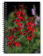 Cardinal Flowers Spiral Notebook