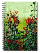 Cardinal Flowers Spiral Notebook