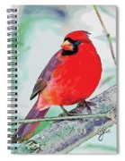Cardinal In Ice Tree Spiral Notebook