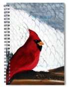 Cardinal In The Dogpound Spiral Notebook