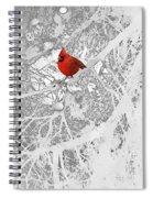 Cardinal In Winter Spiral Notebook