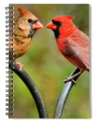 Cardinal Love Spiral Notebook