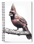Cardinal Male Spiral Notebook