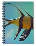 Cardinalfish Spiral Notebook