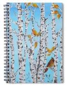 Cardinals Among The Birch-jp2061 Spiral Notebook