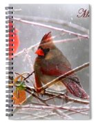 Cardinals - Male And Female - Img_003card Spiral Notebook