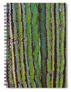 Cardon Cactus Texture. Spiral Notebook