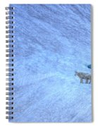 Careful Down Spiral Notebook
