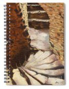 Carew Castle Turret Steps Spiral Notebook