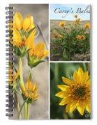 Carey's Balsamroot Collage Spiral Notebook