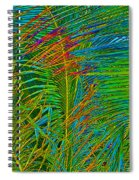 Caribbean Coconuts Spiral Notebook