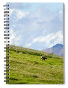 Caribou And Mount Mckinley Spiral Notebook