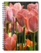 Caring Pink Tulip Time Spiral Notebook
