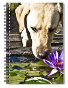 Carla's Dog Spiral Notebook