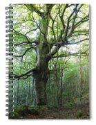 Carly Dromahair Co Sligo Ireland Spiral Notebook