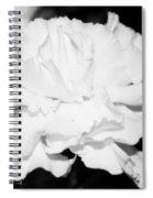 Carnation Against Black Spiral Notebook