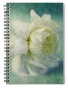 Carnation Spiral Notebook