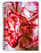 Carnation Watercolor Spiral Notebook