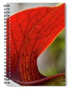 Carnivorous Plants 2 Spiral Notebook
