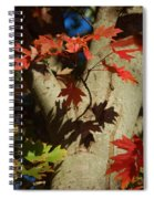 Carolina Autumn Spiral Notebook