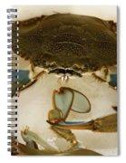 Carolina Blue Crab Spiral Notebook